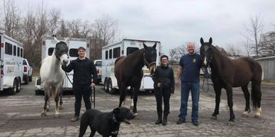 We are very proud to supply the IMPD Mounted Patrol with Fly Masks, here we are pictured with Sergea