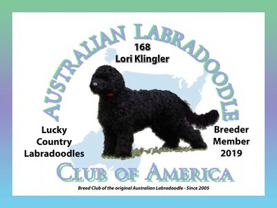 Australian Labradoodle Club of America Member Breeder Logo for Lucky Country Labradoodles