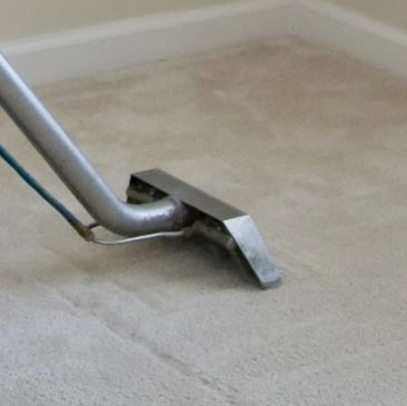 Carpet Cleaning in Ellenton, FL