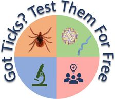 Got Ticks? Send them to our lab and we can test them for free.
