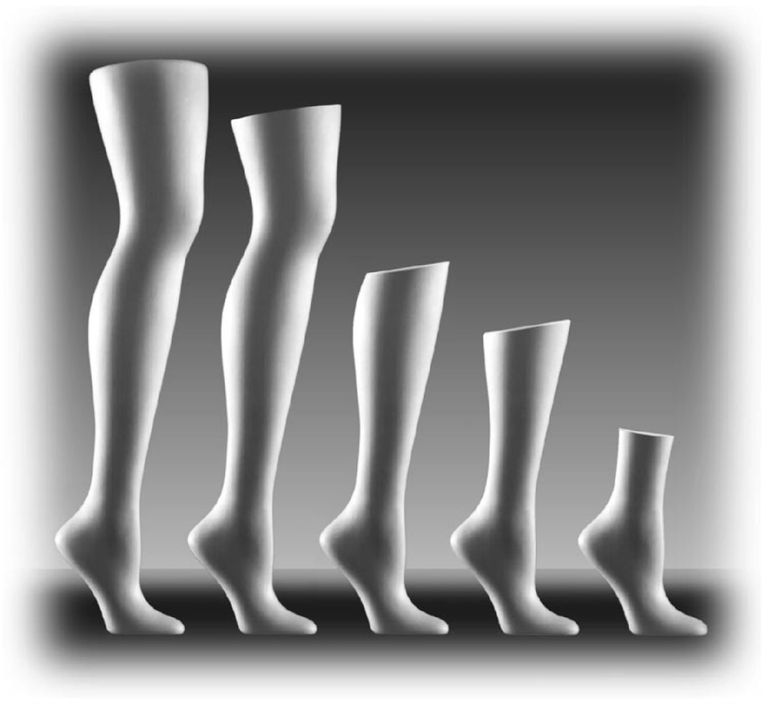 Rpm Displays Mannequins And Body Forms Leg Forms Mannequins