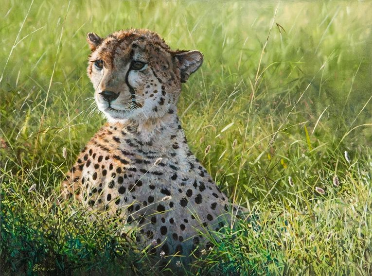 Keith McAllister art artwork cheetah painting africanwildlife wildlifeart