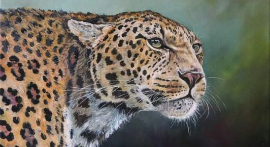 Keith McAllister, African Wildlife, Wildlife Art, Travel Art, Leopard, Oil Painting, oil on canvas