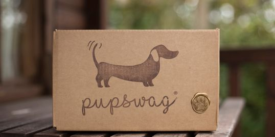 A selection of  quality treats and goodies, plus one special item chosen just for your dog.