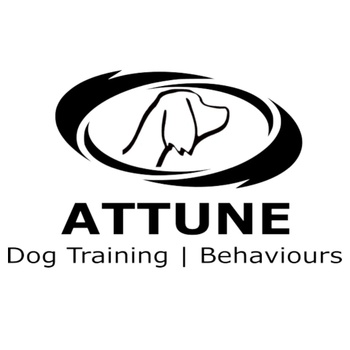 Attune Dog Training