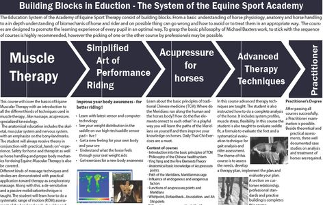 EQUINE SPORT THERAPY COURSES