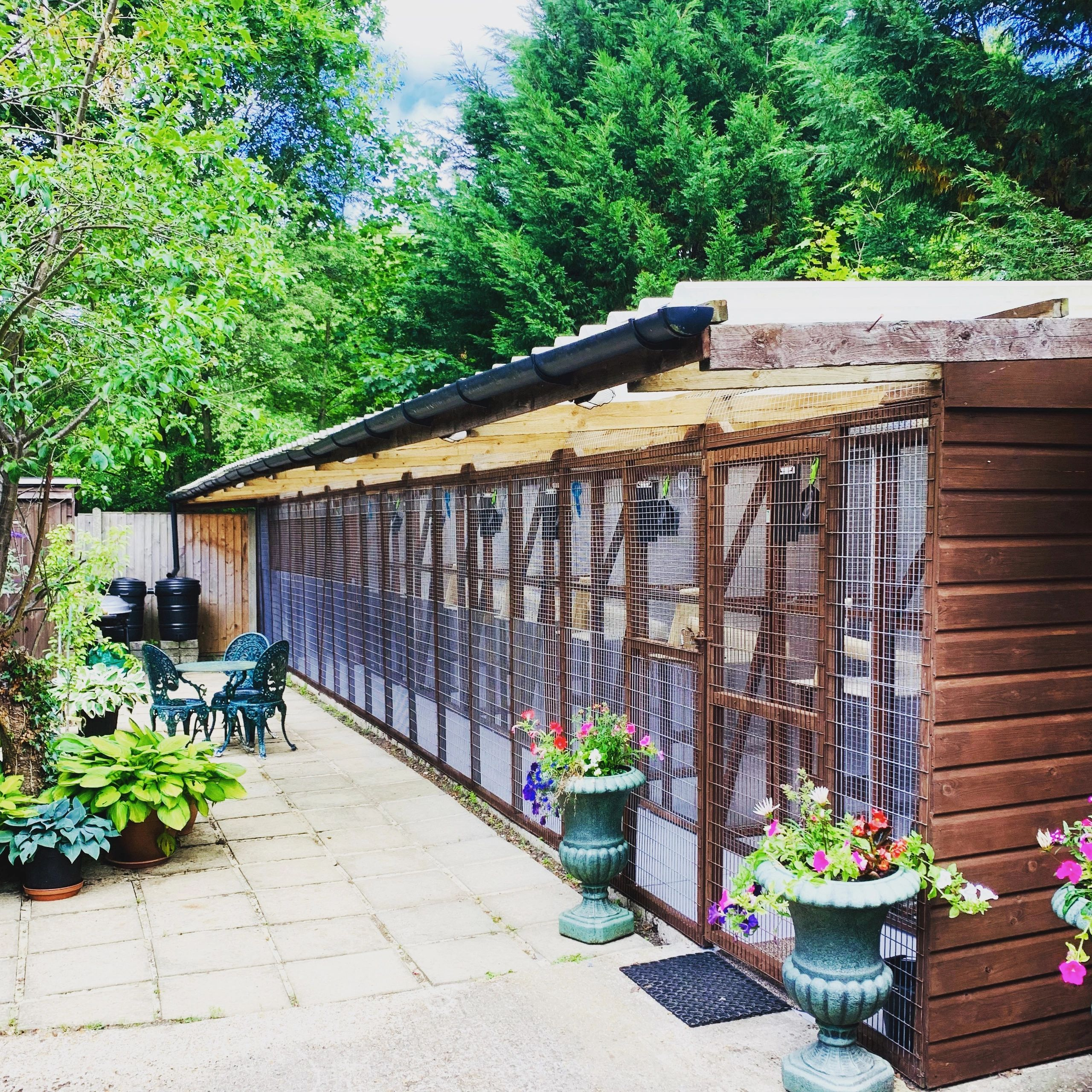 Picture of the boarding cattery