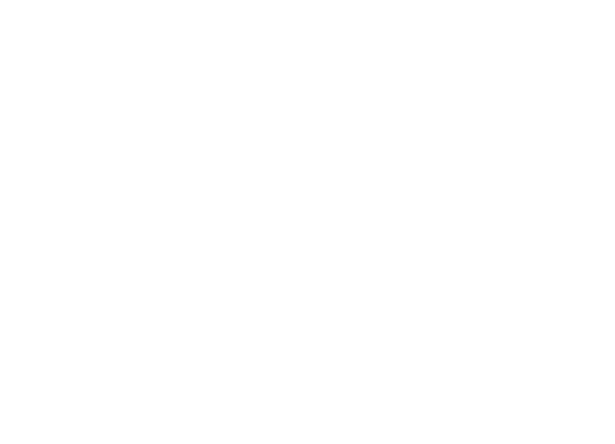 The RAISE Group ® 267-281-3817