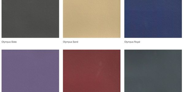 AeroStrength Fitness Equipment Upholstery Color Choices