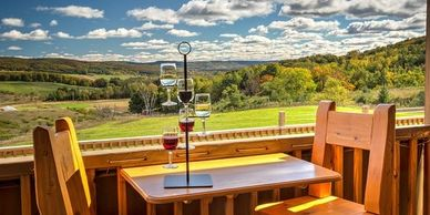 Local vineyards in Petoskey area.