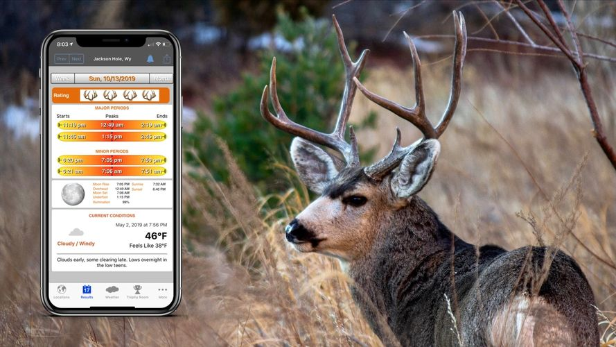 Solunar Tables iPhone app gives best hunting and best fishing times for any date, any location — wor