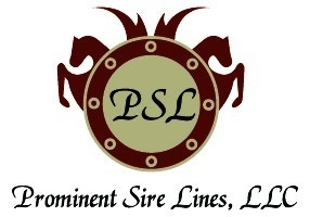 prominentsirelines.com