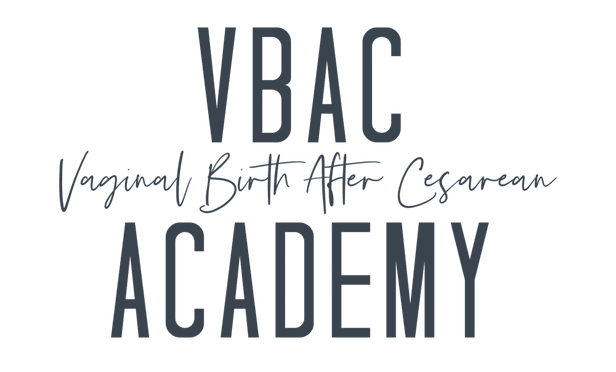 vbac   Academyhttps://websites.godaddy.com/en-US/editor/5fb7e958-