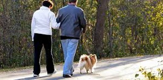 Walk your dog on nearly two miles of trail, enjoy peaceful scenic settings, and improve your health!