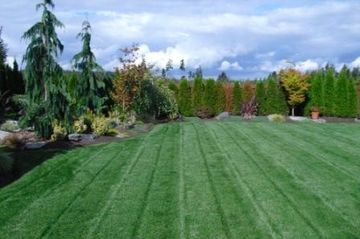 lawn mowing/lawn care/care lawn/pest control/lawn fertilizer/organic fertilizer lawn care service