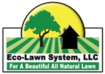 Eco-Lawn System