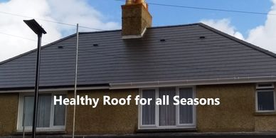 Healthy Roof Island Imperial Roofing