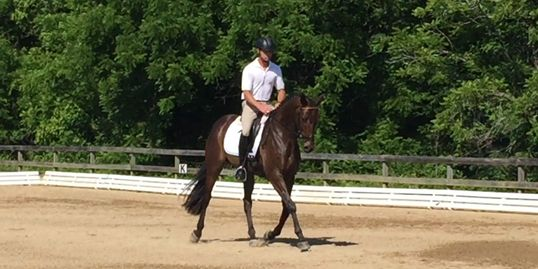 Brookwood Schooling Show Dressage Show Jumpers Show Hunters Equitation Combined Tests