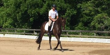 Southeastern Thoroughbred Showcase OTTB TB Dressage Nick Larkin Brookwood Sport Horse Event