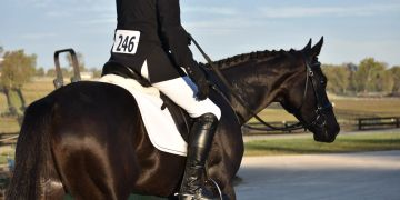 Entry Status, ride times, stabling and rules.  SE TB Classic