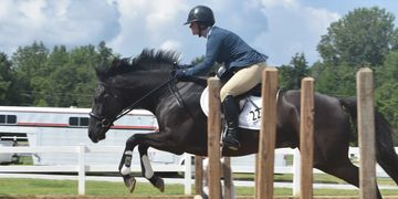 Southeastern Thoroughbred Showcase SETBS OTTB Events Show Hunter Brookwood Farm Sport Horses
