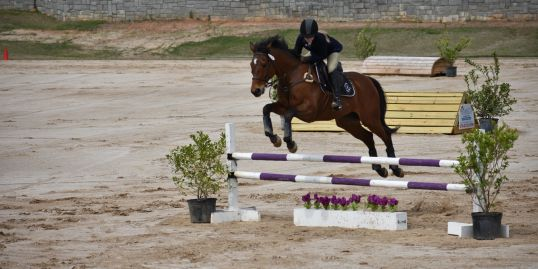 Grand Prix Ring 3-phase show jumping combined tests Thoroughbred Classic and Schooling Show