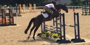 OTTB Events Show Jumping Thoroughbred Showcase Eventing Nick Larkin Brookwood Farm Sport Horses
