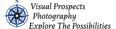 Visual Prospects.Banner Logo