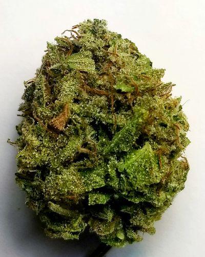 American og inc - Medical Marijuana, Cannabis