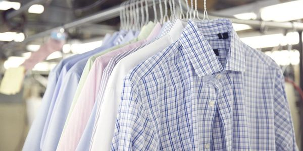 Laundered dress shirts on hangers