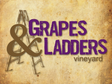 Grapes and Ladders Vineyard