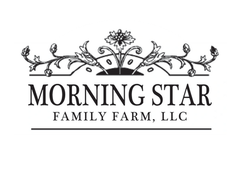 Morning Star Family Farm
