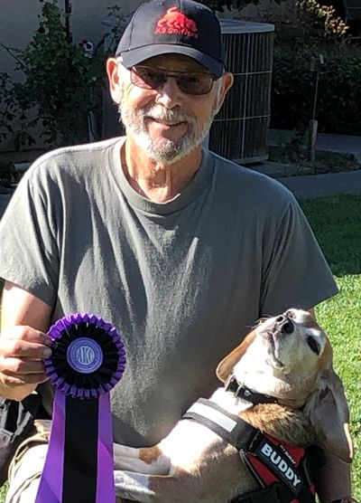 Buddy earning his AKC Scent Work Master Title in Watsonville, CA