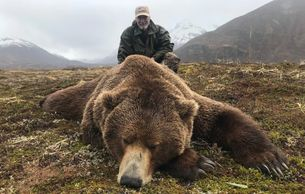 World Record Class Brown Bear In 2018  Joe Frake - 10 foot 8 inch - 28-15/16 SCI Wildman Lake Lodge
