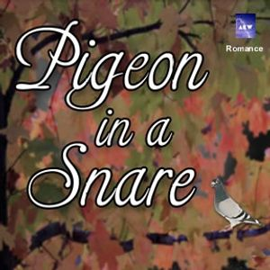 Pigeon in a Snare