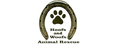 Hoofs And Woofs Animal Rescue