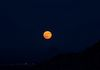 """Harvest Moon On The Rise""-The Harvest Supermoon is on the rise over The Valley of the Sun."