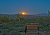"""Glory View""- The full moon rises over the desert with a special friend's bench placed for viewing."