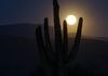 """Awaiting Arms""- The full moon rises into the awaiting arms of the magnificent Saguaro cactus."