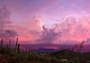 """Pink Cave Creek Clouds""- A colorful sunset over Cave Creek, Arizona."