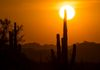 """Dust & Sun"" - A dusty sky, brings a dusty, but colorful sunset over Cave Creek, Arizona, USA."