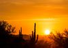 """Going Down Again"" - Bright yellows and oranges, paint the sky at sunset, over Cave Creek, Arizona, USA."