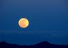 """Blue Sky Moon""- A February Supermoon rises over the McDowell Mountains."