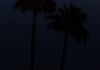 """The Easter Moon""- The Easter full moon rises between palm trees over the desert."