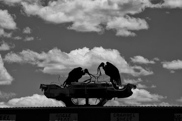 black and white photography for sale, southwest, Santa Fe, New Mexico, Gerald Hill Photography, BW