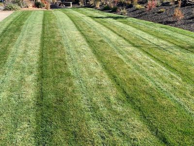 We do precision work on Lawns and Bed work
