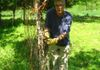 Mark removes a rusty ineffective fence entangled in vines.