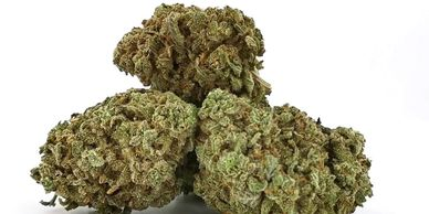 Medical Marijuana The Green Ace Dispensary Coupon Code Cannabis Canakush CBD Oil and Concentrates