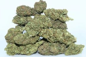 CBDawg CBD Flower premium hemp flowers hemp flower