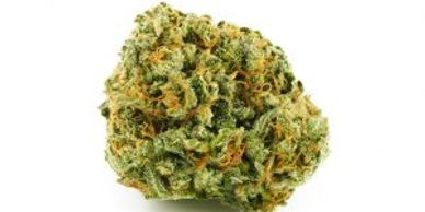 Canakush Coupon code Promocode 10% OFF Canakush Cannabis Sativa West Coast Cannabis Vancouver CBD